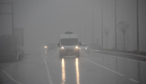 Tekirdağda yoğun sis