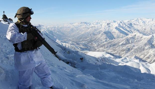Kar kaplanları vatan savunmasında