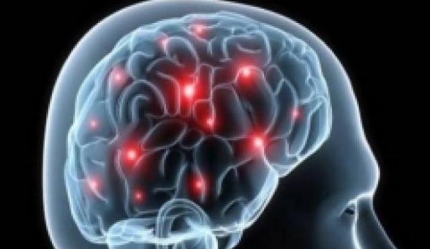 Texas Üniversitesinde 100 beyin çalındı!