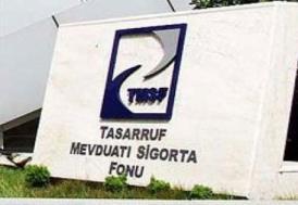 TMSF'ye devredilen şirketlerin aktif büyüklüğü yaklaşık 68 milyar TL'ye ulaştı