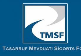 TMSF, Naksan Plastik'i satışa çıkardı