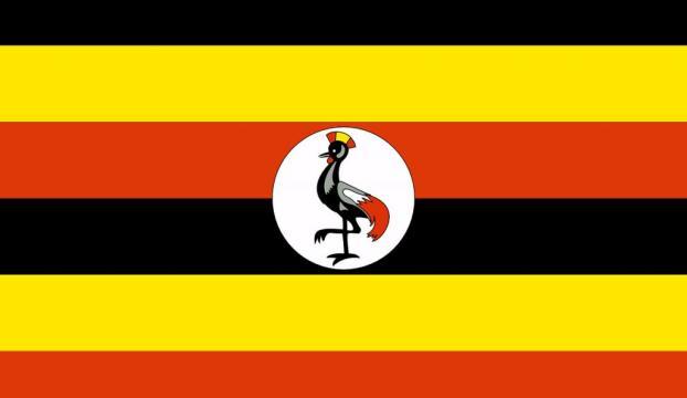 Ugandada heyelan: 40 ölü