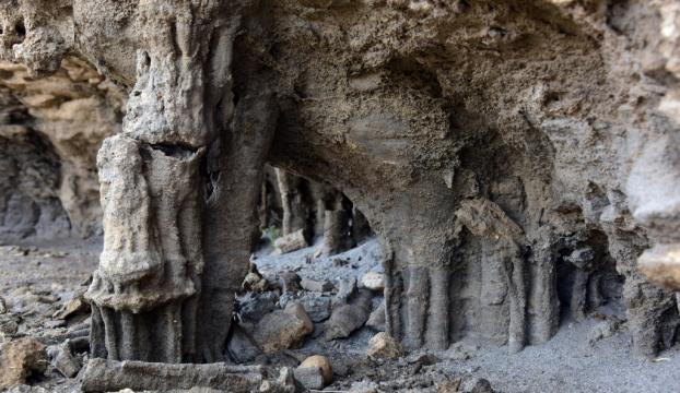 Van Gölündeki dikitlerin benzerine vadide rastlandı