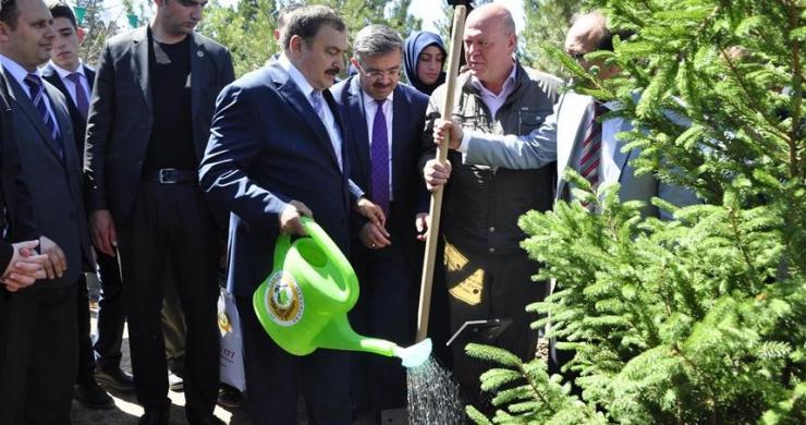 """""""Ağacın, yeşilin değerini ve önemini biliyoruz"""""""