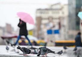 Marmara Denizi'nde fırtına ve yağış uyarısı