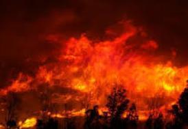 İsrail'deki orman yangınları söndürülemiyor