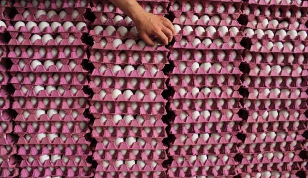 Iraktaki çatışmalar yumurta ihracatını etkiledi