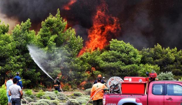 Yunanistanda orman yangınları 77 can aldı